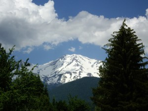 Mount Shasta framed.