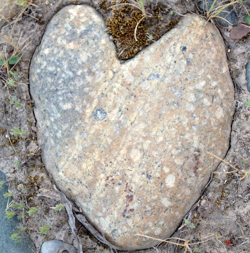 Heart rocks do appear to me regularly, signs to me that I am loved.