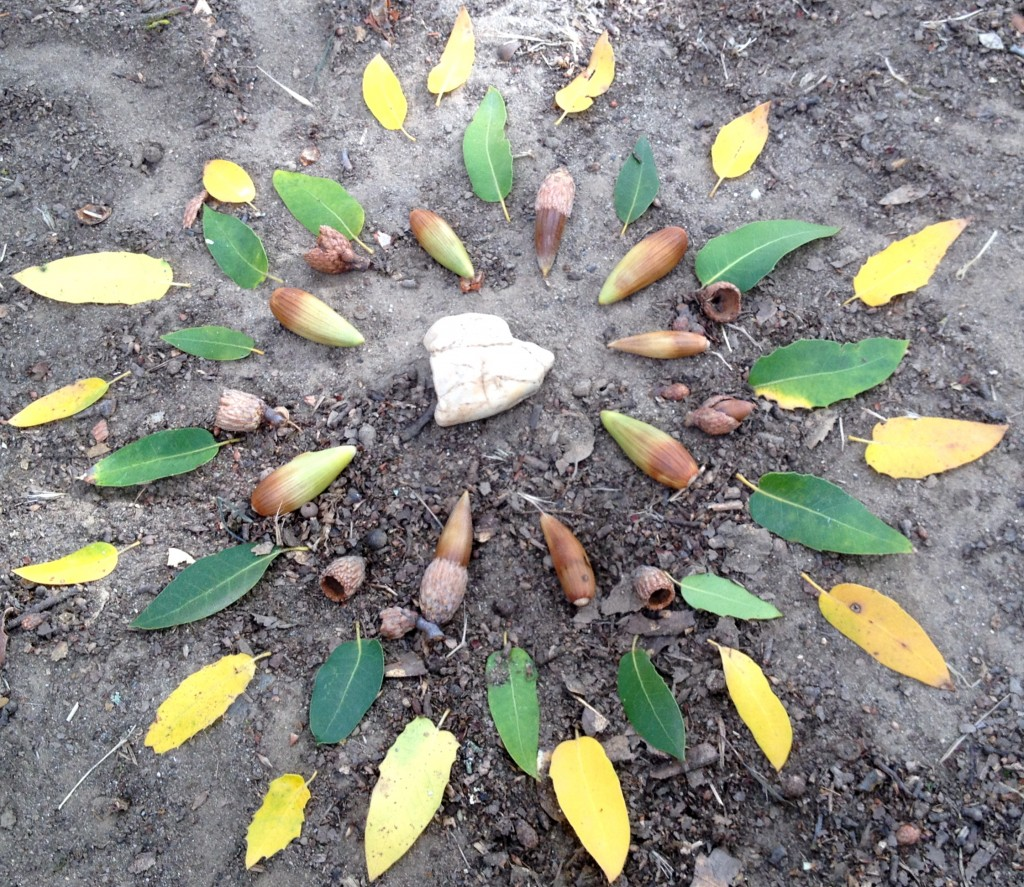 A gift for the faeries that I left with the heart rock and acorns I picked up on my walk.