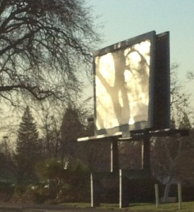 The tree's shadow on the billboard caught my attention, its KA body visible!