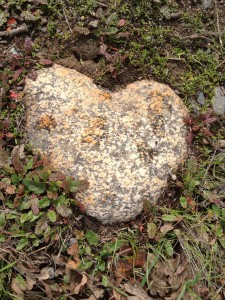 On my walk, I found a heart rock awaiting every few steps! I love our Mother Earth!