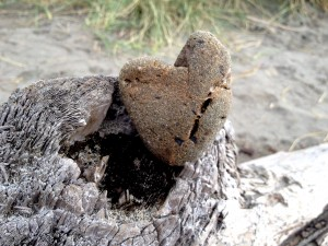 I loved this heart rock, bruised, scarred, dulled yet holding its form.
