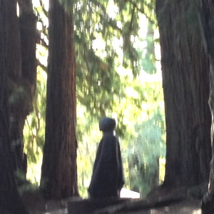 An unusual ET Buddha found sitting in the dark woods.