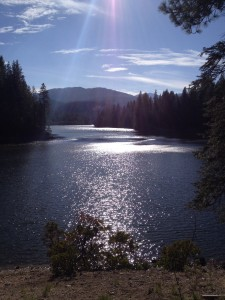 Diamond light dancing on Lake Siskiyou.