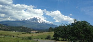 Mount Shasta from the north.