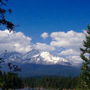 Mount Shasta beguiling always.