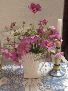 Flowers in the house, so fill my heart. Especially these lacy pink cosmos!