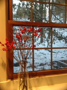 Winterberries collected from their swampy homes in Vermont by my daughter-in-love. Now gracing my windowsill with their cheery red.