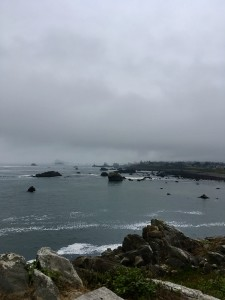 The misty mornings that I recently enjoyed on the CA coast brought ancient memories alive.