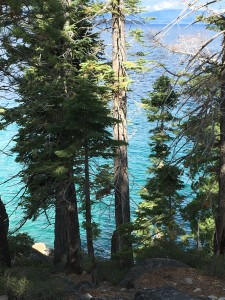 The incredible colors of the waters of Lake Tahoe. My grandson kept marveling at the beauty.