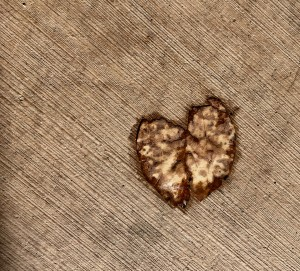 Hearts appearing everywhere. We are so loved.