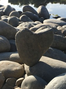 I was delighted that this heart rock wanted to be balanced to shine its love to all by the river!