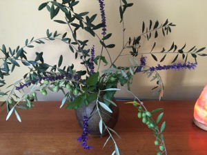 Bouquet of olive branches from trees that thrive in this area.